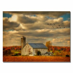 The Family Farm IV by Lois Bryan Framed Graphic Art on Wrapped Canvas by Trademark Fine Art
