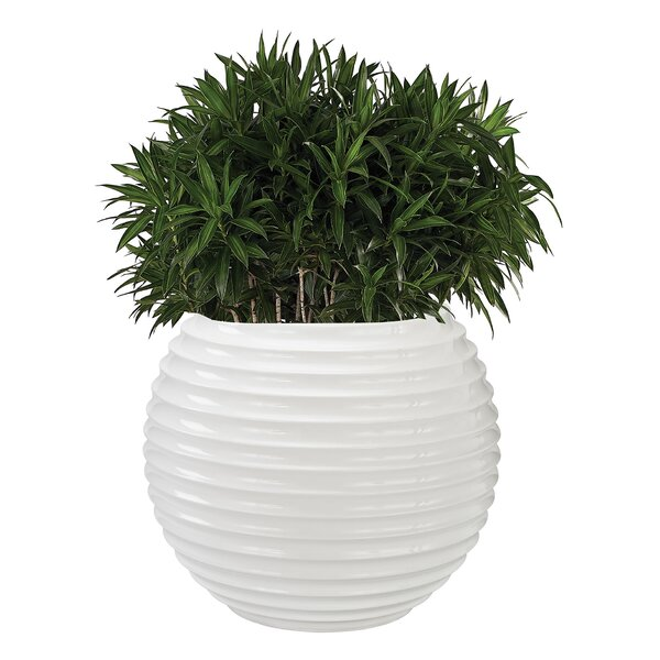 Jaya Fiberglass Pot Planter by Dimond home