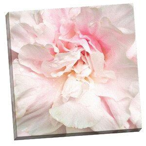 'Power Puff Peony' Photographic Print on Wrapped Canvas by House of Hampton