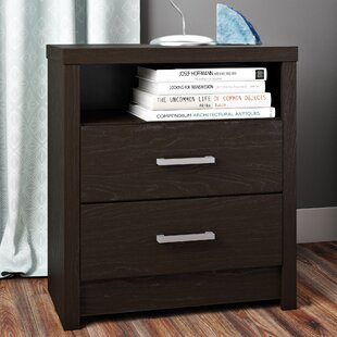 Reviews Reiby 2 Drawer Nightstand By Latitude Run
