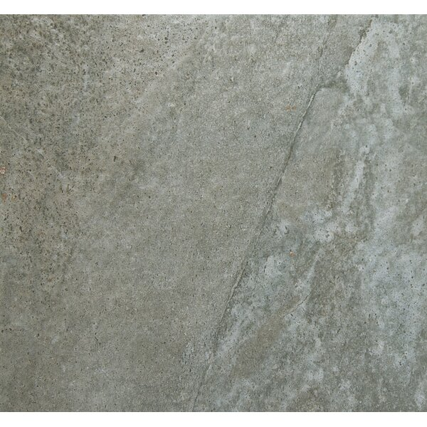 Trovata 20 x 20 Porcelain Field Tile in Ledger by Emser Tile