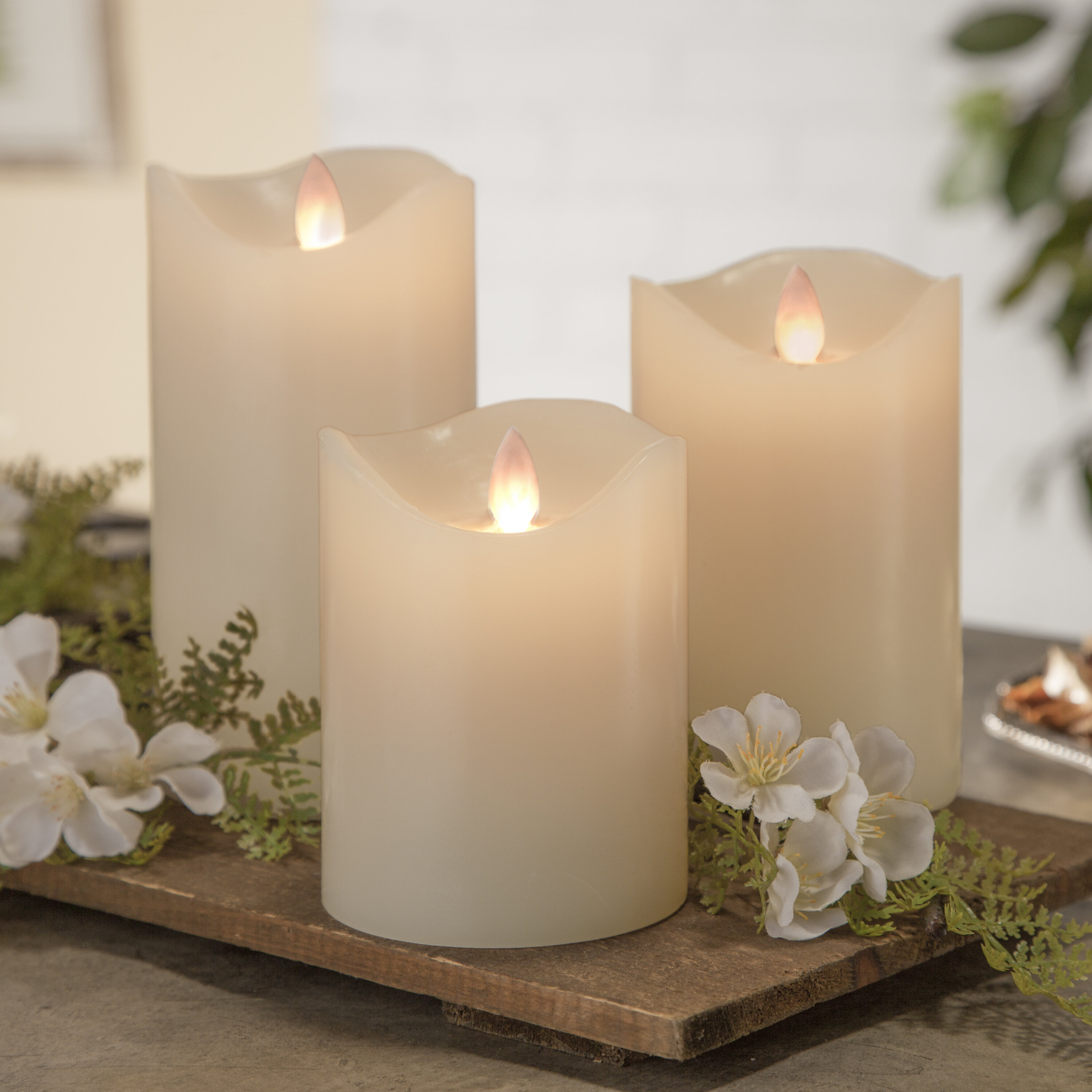 Root Candles Advent Candle Set 4-Count