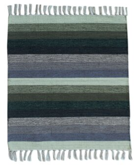 Multi Striped Green/Blue Area Rug by Spura Home