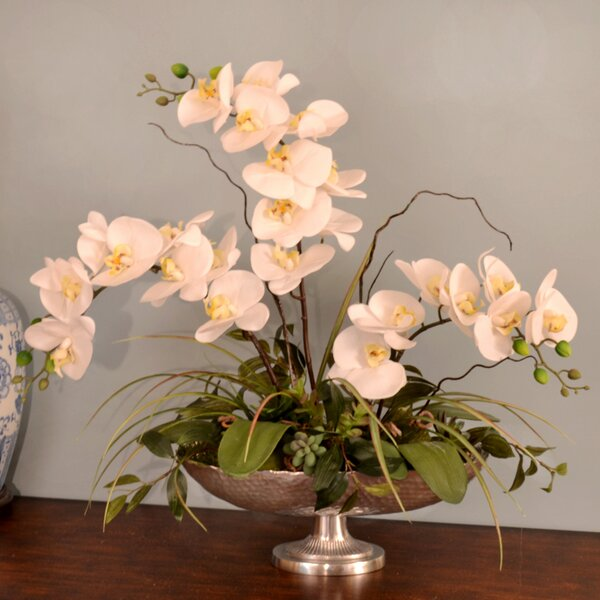 Silk Orchid in Pedestal Bowl by Floral Home Decor