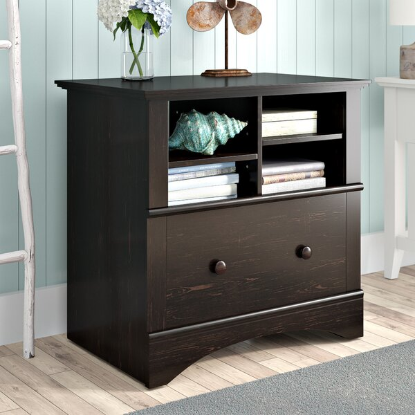 Pinellas 1 Drawer Lateral Filing Cabinet by Beachcrest Home