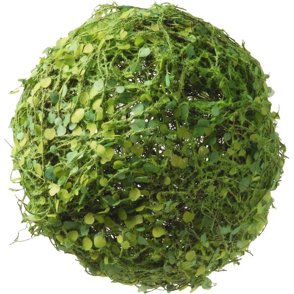 Decorative Moss and Leaves Ball by Three Posts