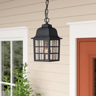 Online Reviews Bentonville 1-Light Outdoor Hanging Lantern By Alcott Hill
