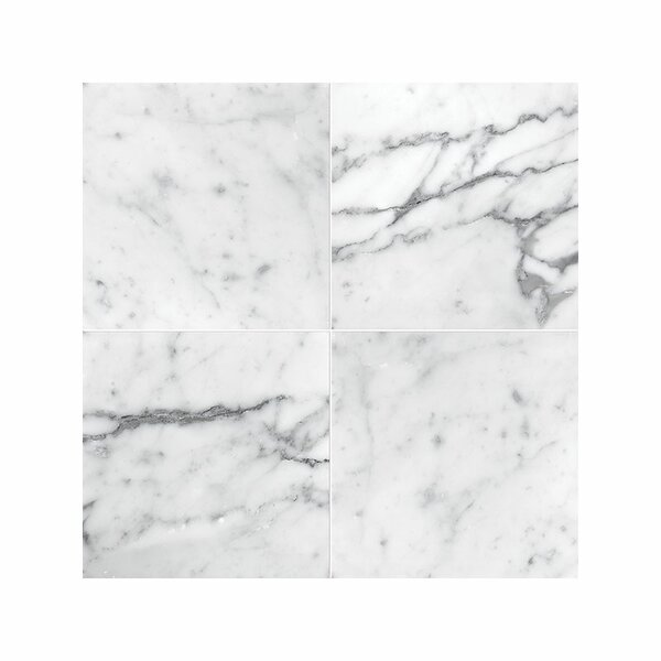 Carrara 4 x 4 Marble Field in Honed White by Parvatile