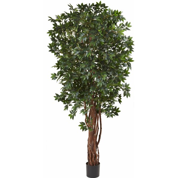 Floor Ficus Tree in Pot by Nearly Natural