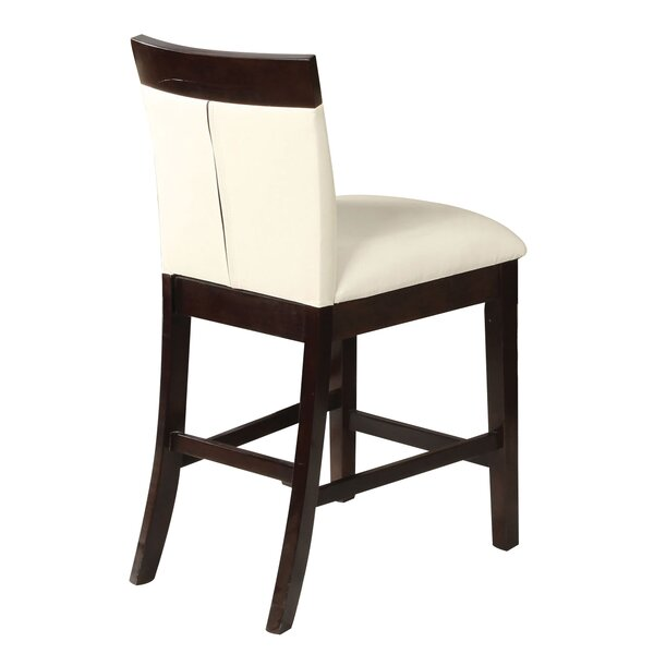 Birney Dining Chair (Set of 2) by Wrought Studio