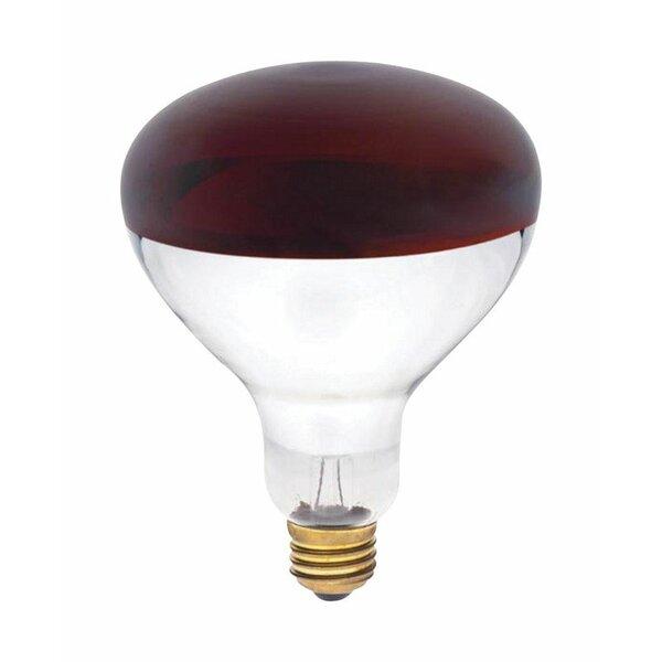250W E26 Incandescent Floodlight Light Bulb by Westinghouse Lighting