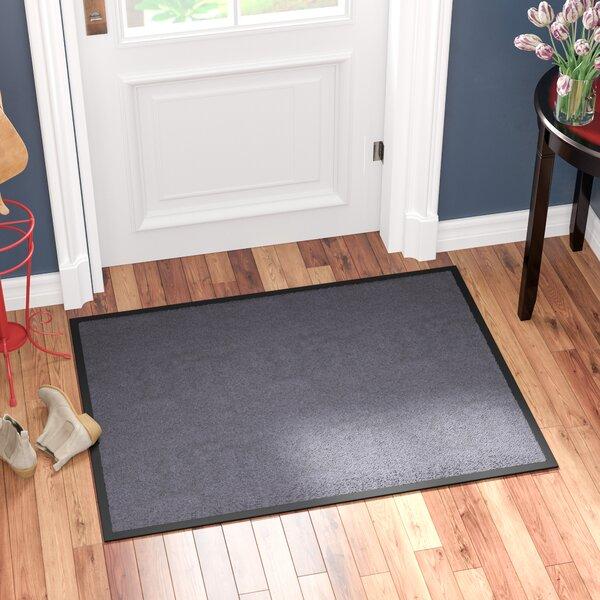 Hastings Rectangular Indoor Plush Entrance Doormat by Red Barrel Studio