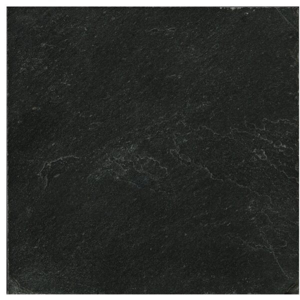 Slate 12 x 12 Field Tile in Midnight Black by Emser Tile