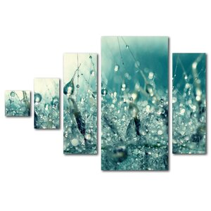 Under the Sea by Beata Czyzowska Young 5 Piece Photographic Print on Canvas Set by Trademark Fine Art