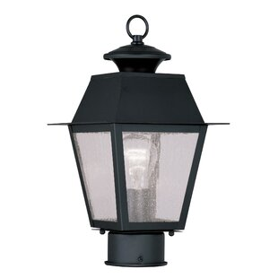 Find Cynda Outdoor 1-Light Lantern Head By Darby Home Co