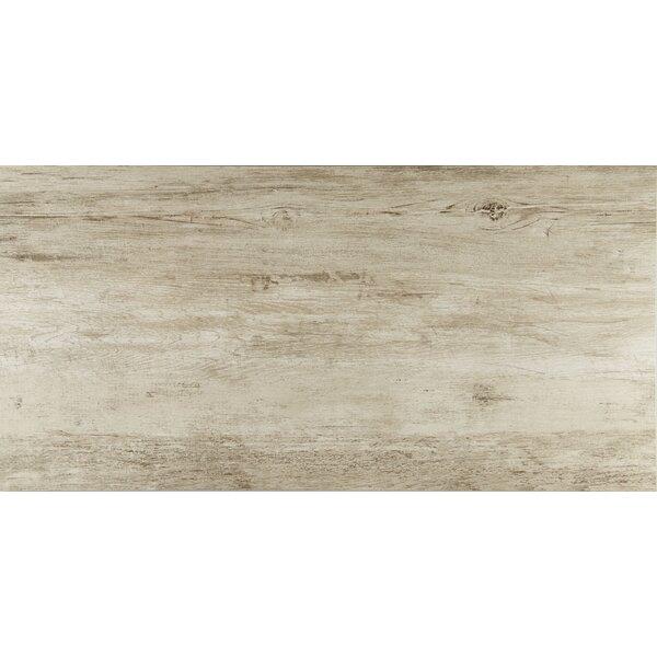 Season Wood 24 x 48 Porcelain Wood Look Tile in Winter Spruce by Daltile