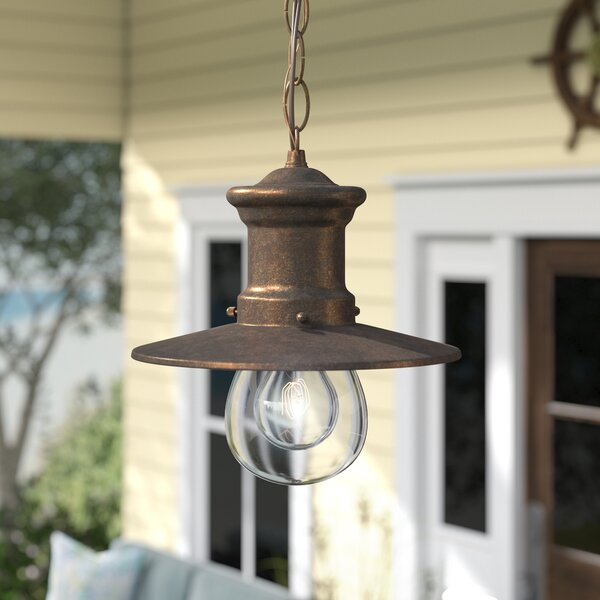 Acklins 1-Light Outdoor Pendant by Beachcrest Home