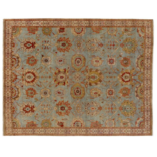 Serapi Hand-Knotted Wool Light Blue/Red Area Rug by Exquisite Rugs