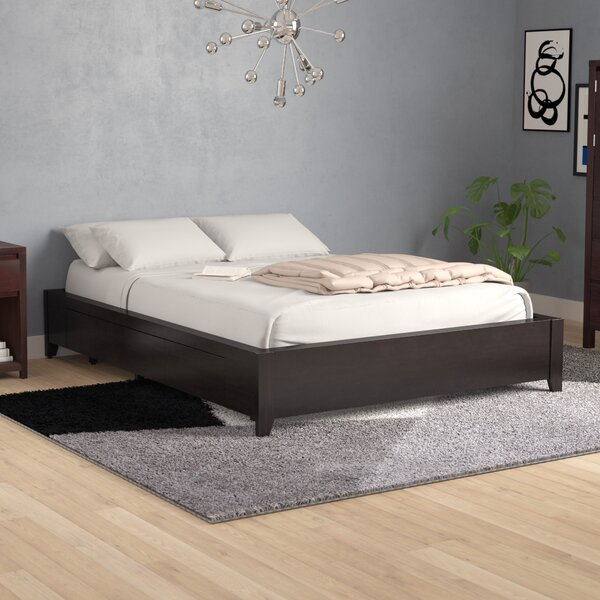 Dejon Storage Platform Bed by Mistana