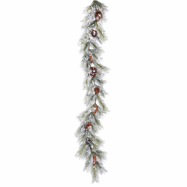 Flocked Ashville Pine Artificial Christmas Garland Unlit by Darby Home Co