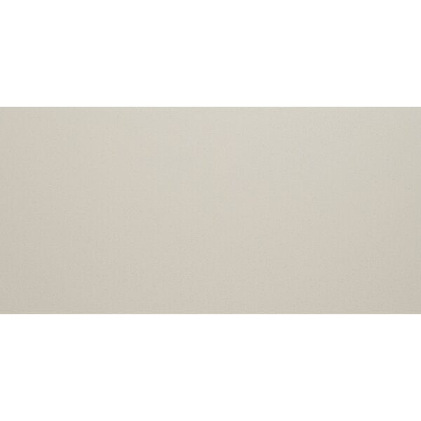 Aledo 12 x 24 Porcelain Field Tile in Stark White by Itona Tile