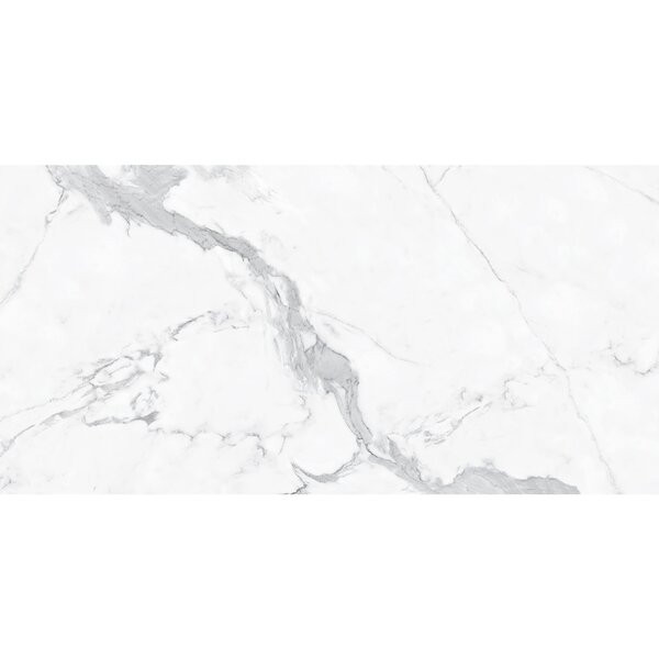 Thin Porcelain 23.6 x 11.8 Porcelain Field Tile in Off-White/Gray by Abolos