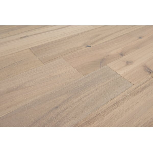 Dublin 6-1/2 Engineered Acacia Hardwood Flooring in Natural by Branton Flooring Collection