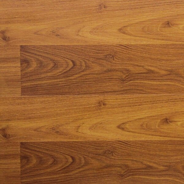 8 x 48 x 8.2mm  Laminate Flooring in Terracotta Alder (Set of 22) by Serradon