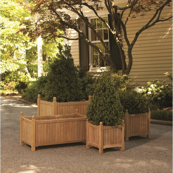 Dunecrest 4 Piece Wooden Planter Box Set by Canora Grey