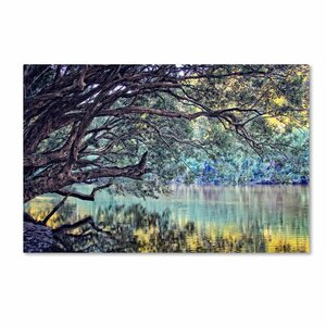 'A Place to Dream' by Beata Czyzowska Young Photographic Print on Wrapped Canvas by Trademark Fine Art