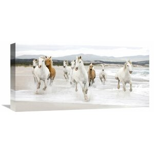 'Horses on the Beach (detail)' Photographic Print on Wrapped Canvas by Alcott Hill