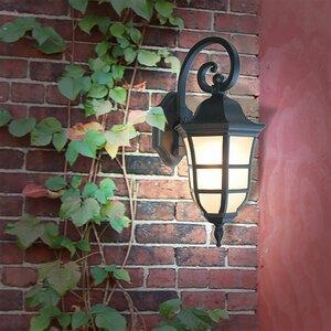 Le Noir 1-Light Outdoor Wall Lantern