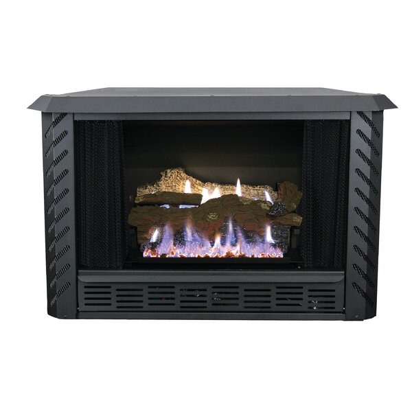 Vent Free Propane Fireplace Insert by Ashley Hearth