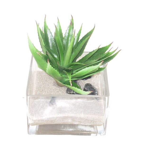 Faux Agave Desk Top Plant in Decorative Vase by Creative Branch