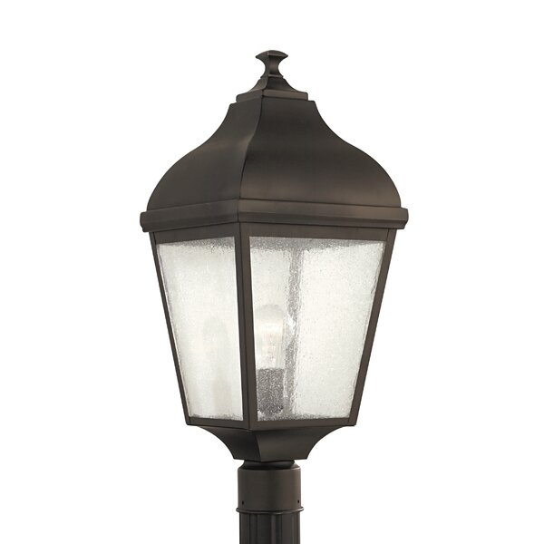 Chesterhill Outdoor 1-Light Lantern Head by Darby Home Co
