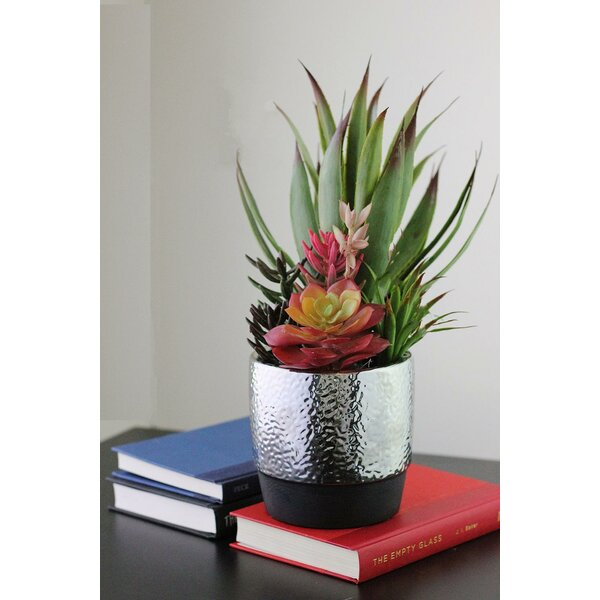Artificial Desktop Succulents and Agave in Pot by Bungalow Rose