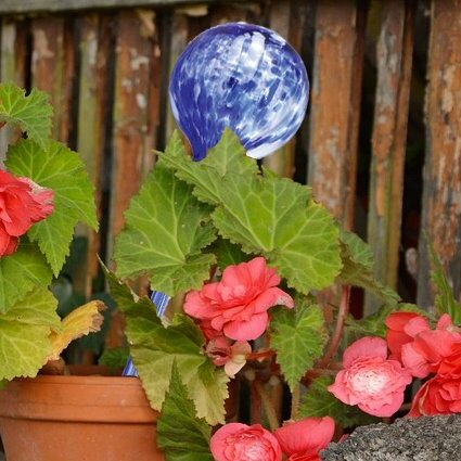 Laster Glass Plant Watering 4 Piece Gazing Globe by Winston Porter