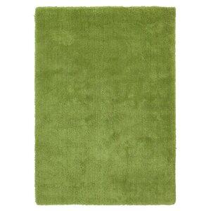 Braun Hand Woven Fern Green Area Rug