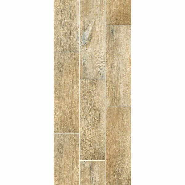 Avenues Plank 7 x 22 Ceramic Wood Look Tile in Cider by Shaw Floors