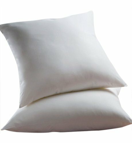 Euro Pillow (Set of 2) by Alwyn Home  @ $70.00