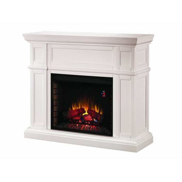 Lincolnville Electric Insert Fireplace by Darby Home Co