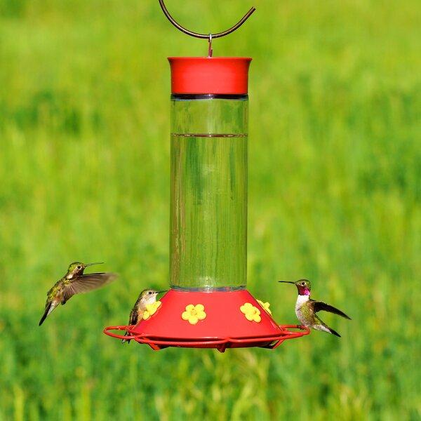 Glass Hummingbird Feeder by Perky Pet