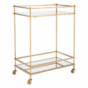 Ran Mirrored Bar Cart by Everly Quinn
