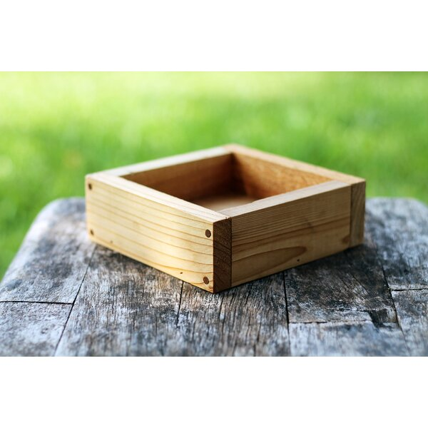 Delgado Serving Tray by Millwood Pines