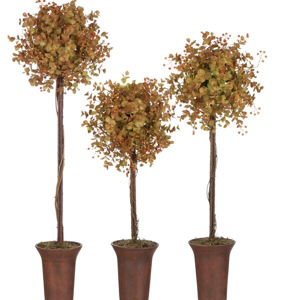 3 Piece Eucalyptus Floor Topiary in Planter Set by Alcott Hill