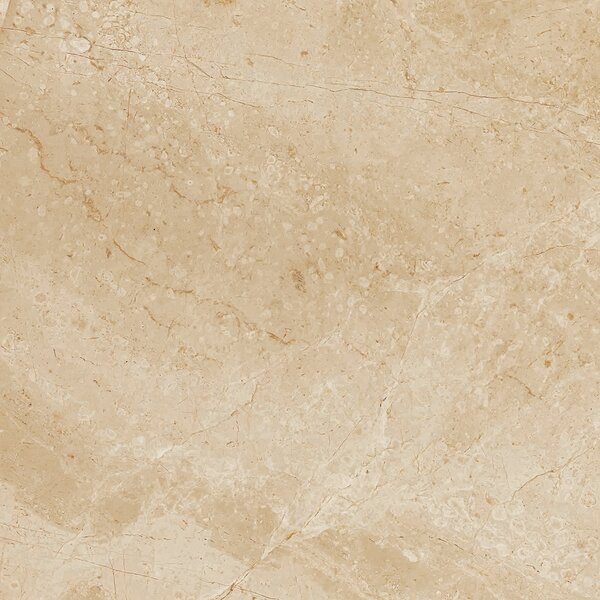 Peyton 18 W x 18 Porcelain Field Tile in Beige by Parvatile