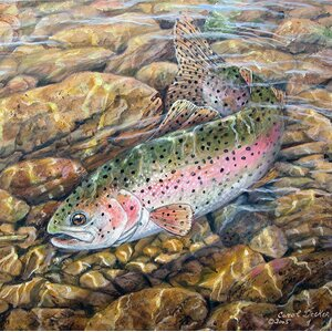 'Rainbow Trout' Painting Print on Wood by WGI-GALLERY