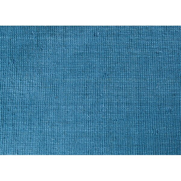 Hand Woven and Knotted Blue Indoor/Outdoor Area Rug by Latitude Run