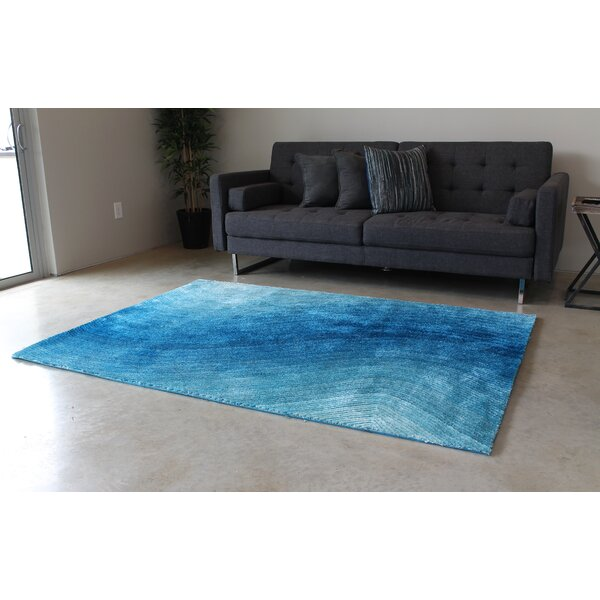 Blue Area Rug by Blazing Needles