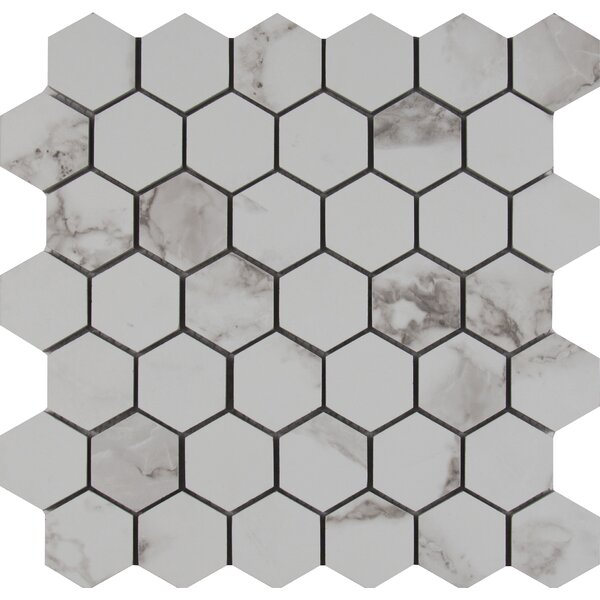 Statuario 2 x 2 Hexagon Porcelain Mosaic Tile in Matte by MSI